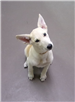 19-446 Carson tan/white male Shepherd/Lab mix pup.