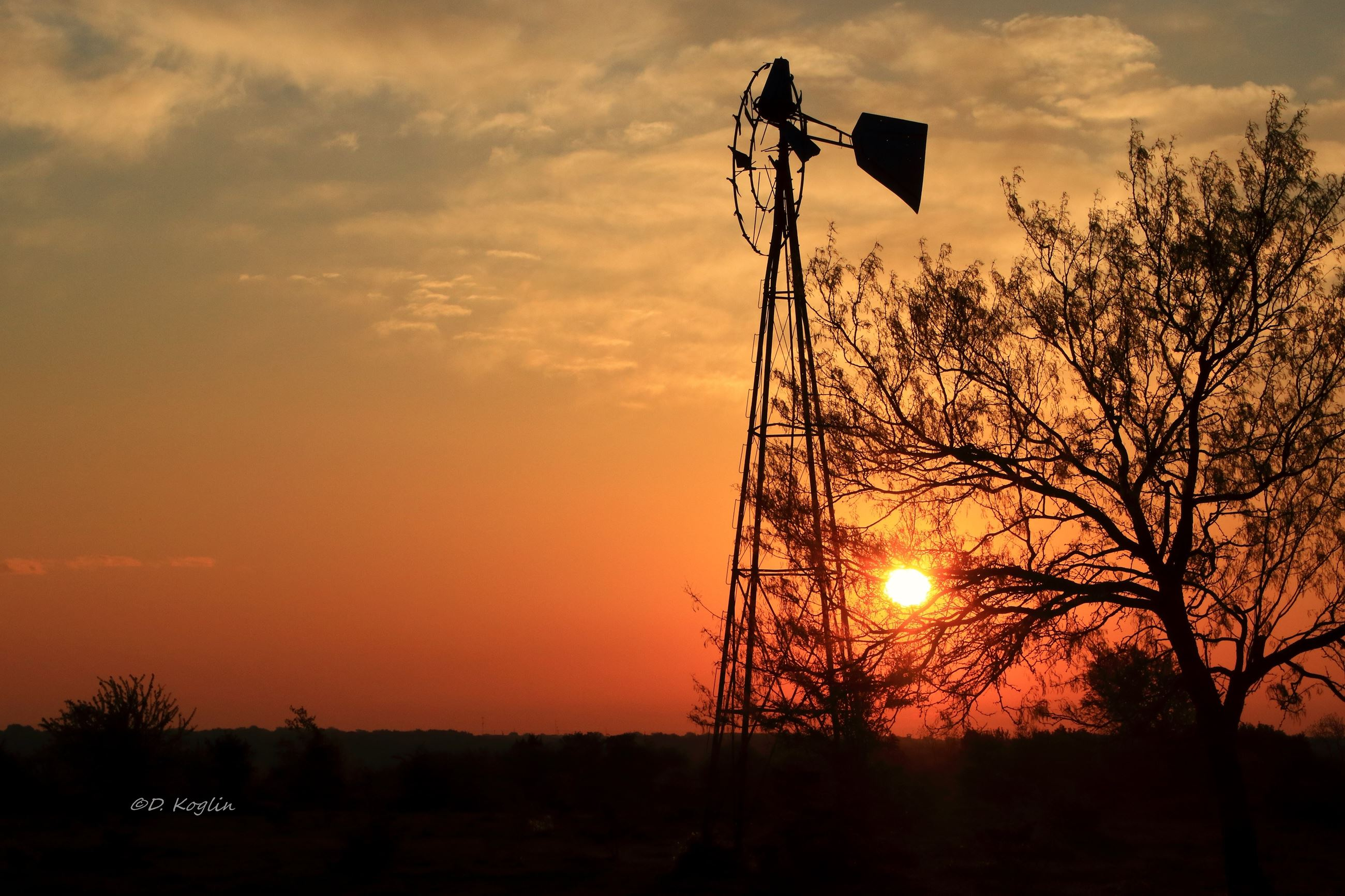 Windmill next to a tree with the sun low in the orange sky and the land is dark