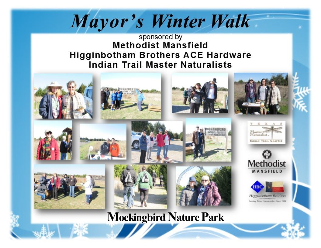 Winter Walk 2017
