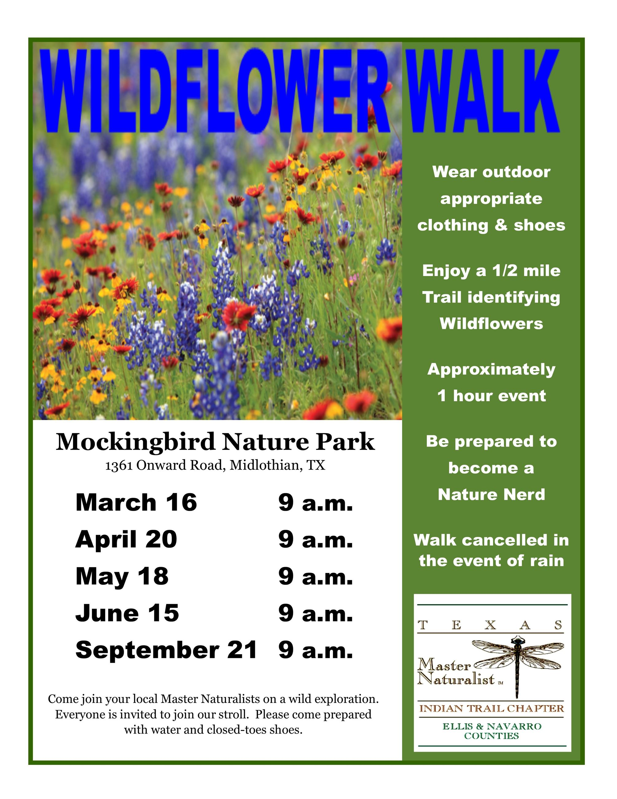 Fb wildflower walk 2019 flyer