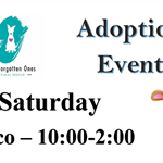 Adoption Event Flyer-2
