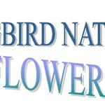 Wildflower Walk logo.jpg